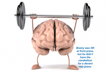 How exercise helps your brain